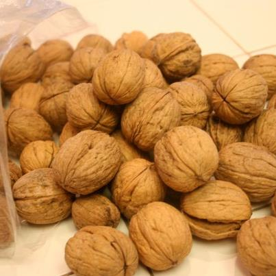 Health benefits of Walnut , Healthy Diet Tips,Balance Cholesterol,Cure Insomnia, Healthy Brain Function