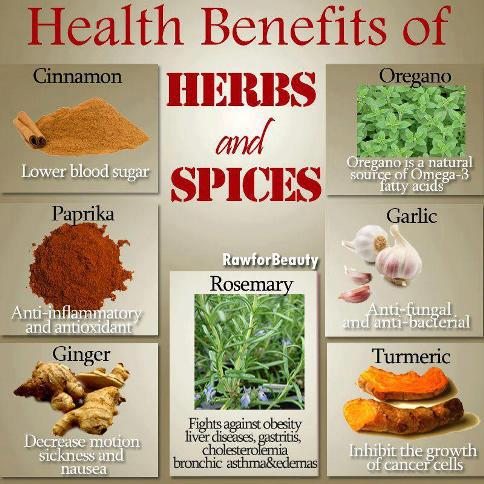 Health benefits of Herbs & Spices , Daily Health Tips, Turmeric, Cinnamon, Ginger, Garlic, Rosemary, Paprika