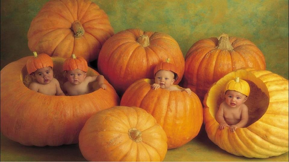 Halloween wishes,Quotes,Greeting cards,images,wallpapers,kids,children