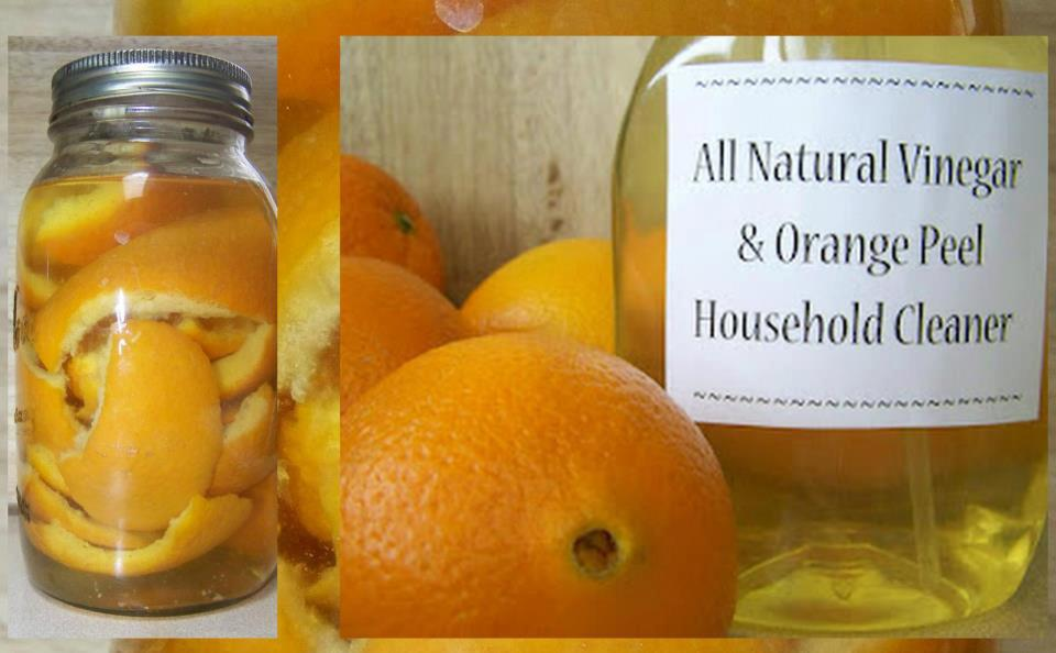 Home Remedy,Health Inspirations,vinegar, orange, lemon,Household Cleaner