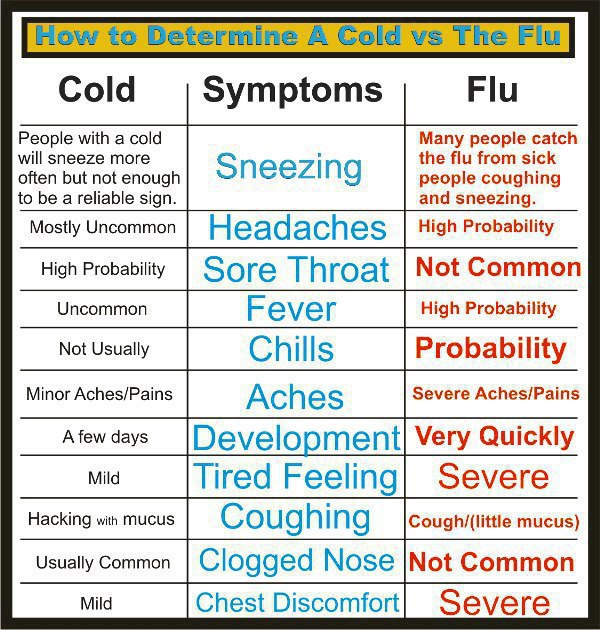 Comparison between Flu & Cold,Health Inspirations,Tips,Inspirational Quotes, Pictures and Motivational Thought