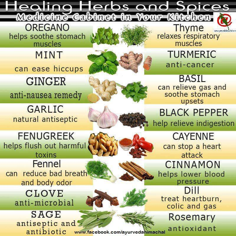 home remedy,healing herbs,spices,healthy food,life style,