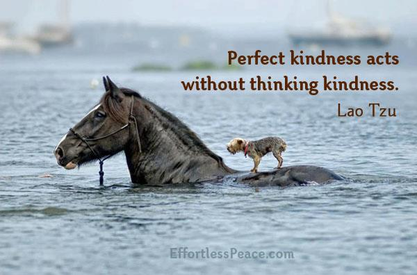 Inspirational Quotes, Pictures and Motivational Thoughts.kindness,lao tzu