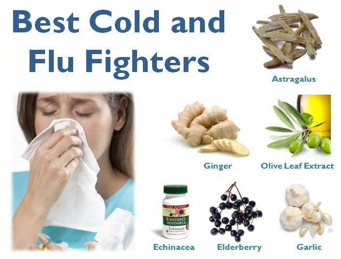 foods to fight against the common cold,health tips