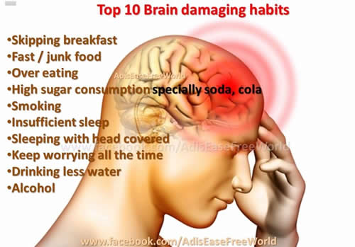 Herbs to improve brain function and memory