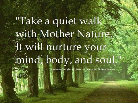 nature quotes quotesgram