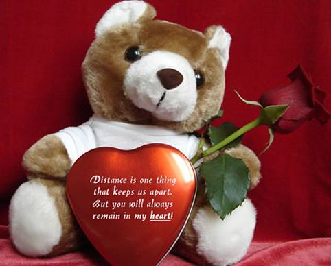 teddy bear day quotes,messages,thoughts,greetings