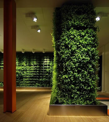 Benefits of Green Walls,healthy life style