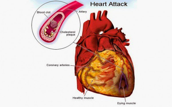 water,heart,health tips
