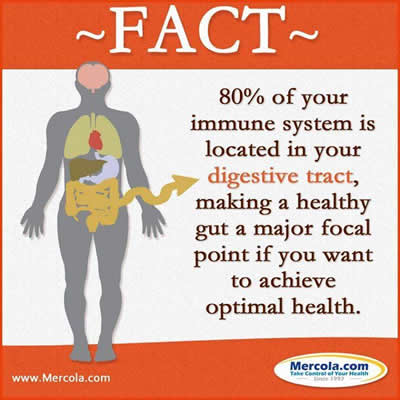 Fact about Digestive system ,health tips